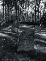 Old Forgotten Cemetery by satanen