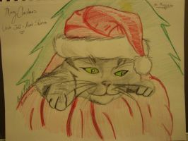 Christmas Kitty by spidyphan2