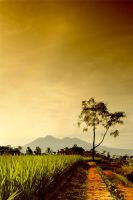 Postcard From Heaven-9 by IndraNte