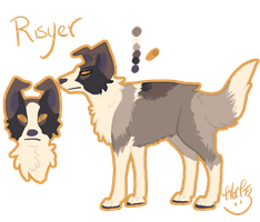Risyer Reference Sheet by Kama-ItaeteXIII