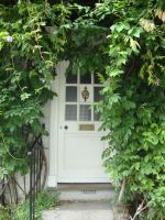 Leafy door by CamillaAnne