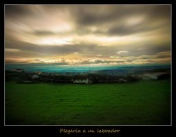 Plegaria a un labrador by UtopiaIsBanished