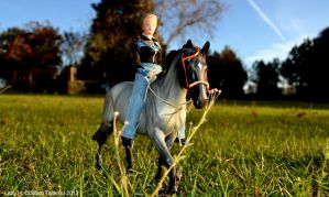 Blue Skys and green grass - entry by LazyHcustomtack