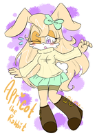 .Apricot the Rabbit. by PatchworkedHeart