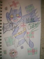 Ninja-Doodler 2011 Christmas by Cats-Eye-93