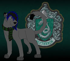 Slytherin ID by boxes-of-foxxes