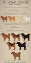 The Dogue Mouton pg3 - Colors and Markings by ShockTherapyStables