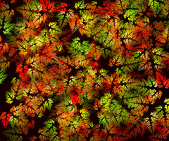 Fractal Autumn Color by LivSeven