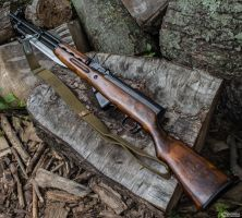 An SKS bathing in the Sun by spaxspore