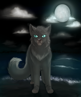 Jayfeather - Warrior at heart by dreamshimmer
