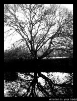 Trees's Reflection by Lea-Chausson-Lallier