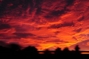 red sky by vtr1000f