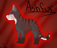 Ashfur Reference by xZonti