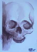 20100521 plain skull by Signevad