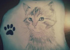Cat^_^ by DreamGirl24