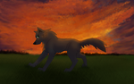 Erolwolf's commission w back- by Rolfwolf
