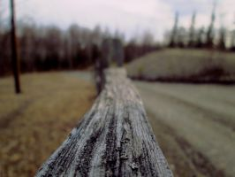Fence by screamingoldwoman