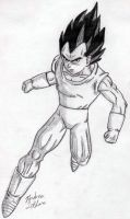 Vegeta - Sketch #3 by Jaylastar