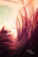 the morning light in my hair by rosemaree-images