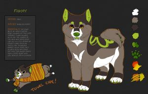 Flash Reference Sheet by Kium