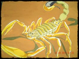 the desert scorpion by tong669982