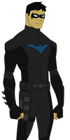 YJ- Nightwing Redesign by TheEtownHero