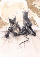 Catwoman for Batman Silent book by tinavalentino80