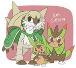 Team Chespin SPOILERS by ecokitty