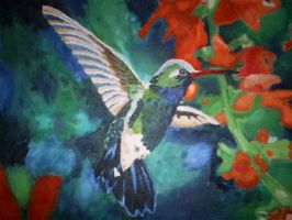 Humming Bird by Athaso