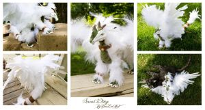 Snow Wing - Multiple Views by BeeZee-Art