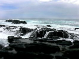 Rock platform, Flinders by postaldude66