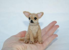 Needle Felted Chihuahua Puppy by amber-rose-creations