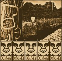 OBEY Vintage2 by LOVEnotWAR