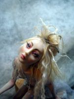 Touch of Magic Fairy Face by cdlitestudio