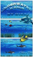 Underwater world footages by DiZa-74