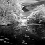Infrared River by SarahVlad