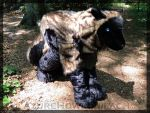 Wolf Quadsuit  - video on youtube by AzureHowlShilach