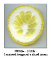 - STOCK - sliced lemon 2 by Von-Chan
