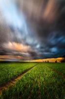 Storm chasing 2 by StefanPrech