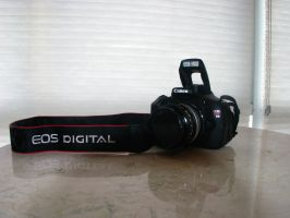 Canon EOS Rebel T3i by Camel51