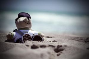 Teddy Beach by DavidBenoliel