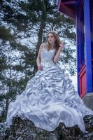 Ice bride - stock by Liancary-art