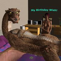 My Birthday Wish by DragonSlave90