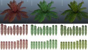 fern - texture1 by sfogato