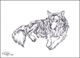 Wolf by ALart90