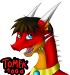 Your Red Dragon in new version ^^(update) by Tomek1000
