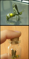 Bottled mechanical bee by JohannesVIII