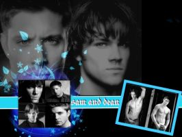spn dean and sam by finaldreams7