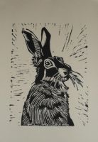 Hare by nellbelle