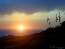 Alentejo Sunset by Talkingdrum